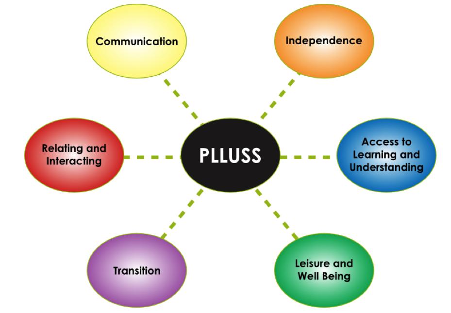 PLUSS Diagram